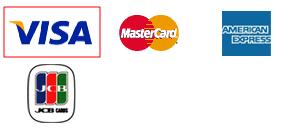 thanh toán qua visa
